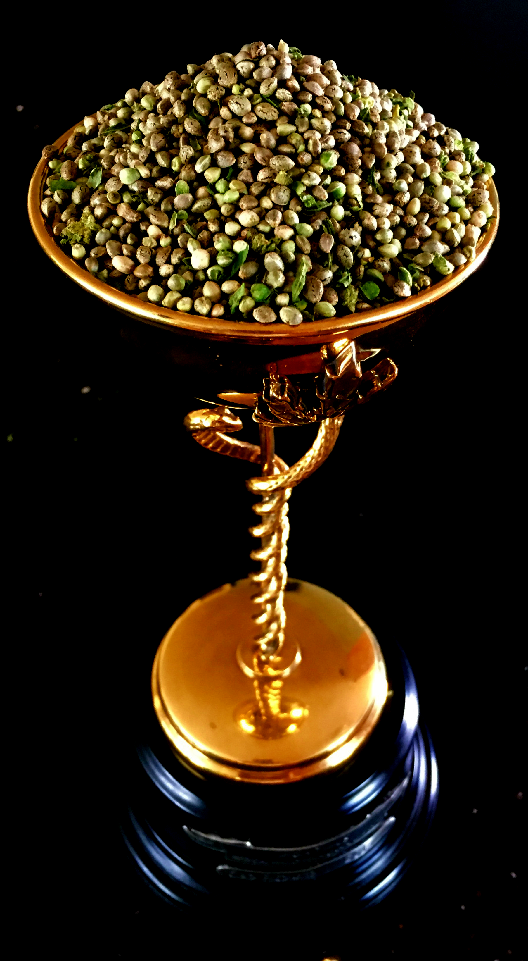 Cannabis-Cup-filled-with-Cali-Cure-Seeds-closeup2
